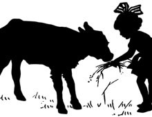 Silhouette of a Girl Feeding a Calf
