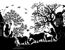 Silhouette of a Man Herding Cows