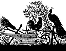 Silhouette of a Rooster and Peacock on a Plow