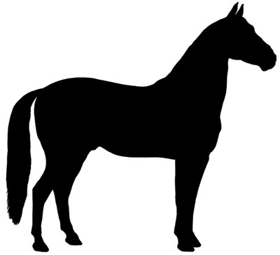 Horse Silhouette Picture