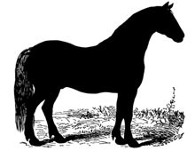 Large Horse Silhouette