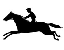 Silhouette of Horse and Jockey