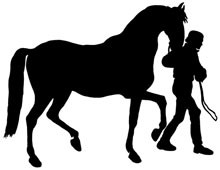 Walking Horse Silhouette