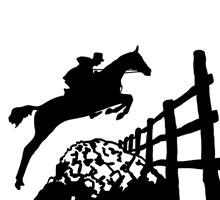 Jumping Horse Clip Art