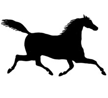 Horse Running Image