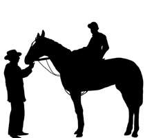 Racing Horse Images