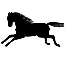 Silhouette of Horse Galloping